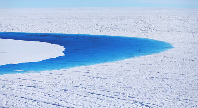 Water stands on part of the glacial ice sheet that covers about 80 percent of Greenland, on July 17, 2013. (Photo by Joe Raedle/Getty Images via The Atlantic)