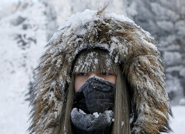 A woman poses while taking a selfie picture in a snowy wood on the bank of the Yenisei river, with the air temperature at about minus 21 degrees Celsius (minus 5.8 degrees Fahrenheit), outside the Siberian city of Krasnoyarsk, Russia, January 10, 2016. (Photo by Ilya Naymushin/Reuters)