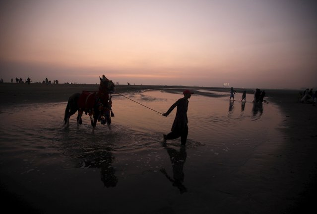 A man walks with his decorated family horse which he offers customers for a ride at Clifton Beach in Karachi, Pakistan, January 8, 2016. (Photo by Athar Hussain/Reuters)