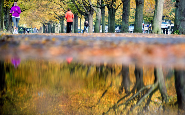 Two women jog past autumn colored trees and reflect in a puddle on October 14, 2013 in Hanover, central Germany. (Photo by Julian Stratenschulte/AFP Photo/DPA)
