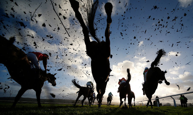 Action over fences at Taunton Racecourse on January 11, 2017 in Taunton, England. (Photo by Alan Crowhurst/Getty Images)