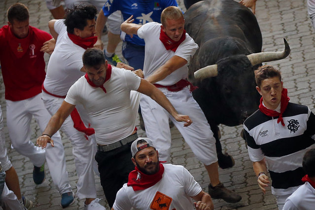 Revelers run with a Jandilla's ranch fighting bull during the running of the bulls of the San Fermin festival in Pamplona, Spain, Tuesday, July 7, 2015. (Photo by aniel Ochoa de Olza/AP Photo)