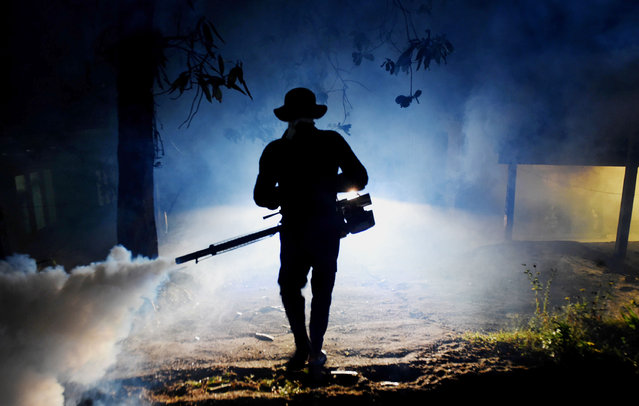 In this photograph taken on January 24, 2017, a Sri Lankan health worker sprays a neighbourhood with a fog used to ward off mosquitos in Biyagama on the outskirts of Colombo. Mosquito-related dengue cases have risen sharply in and around the capital despite dry weather conditions, according to local officials, who have stepped up efforts to fog residential areas to tackle mosquito breeding areas. (Photo by Ishara S. Kodikara/AFP Photo)