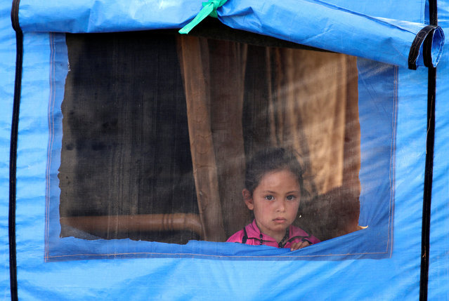 An internally displaced girl, who fled with others the shelling on the southern city of Deraa, looks out from a tent in the surrounding plains of the city, Syria April 20, 2017. (Photo by Alaa Al-Faqir/Reuters)