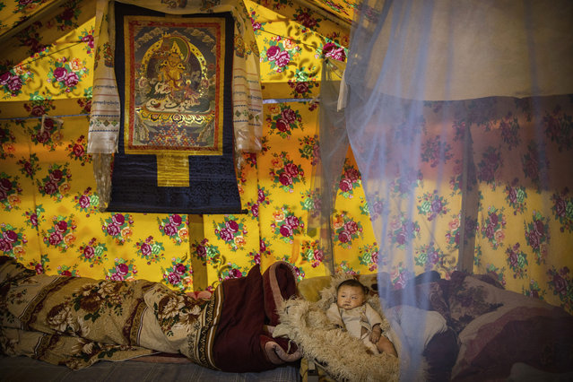 A Tibetan baby lays in a tent at a temporary camp for cordycep pickers on May 23, 2016 on the Tibetan Plateau near Zadoi in the Yushu Tibetan Autonomous Prefecture of Qinghai province. (Photo by Kevin Frayer/Getty Images)