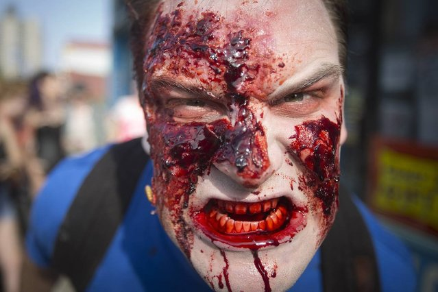"A participant of the ""Zombie Takeover of Coney Island"" acts like a zombie as he walks along Surf Avenue in Coney Island in the Brooklyn borough of New York, July 2, 2014. (Photo by Carlo Allegri/Reuters)"