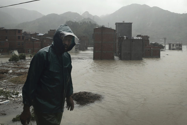 A man walks past a village submerged by water after it was hit by Typhoon Soudelor in Ningde, southeast China's Fujian province, Sunday, August 9, 2015. (Photo by Chinatopix via AP Photo)