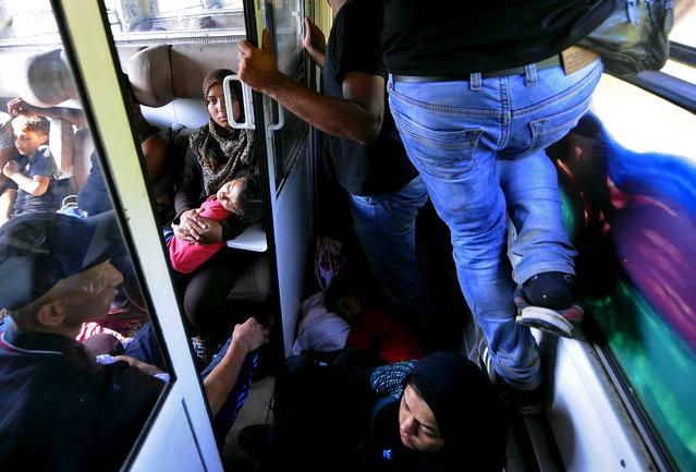 Syrian migrants travel on a train near Skopje in Macedonia August 2, 2015. (Photo by Ognen Teofilovski/Reuters)