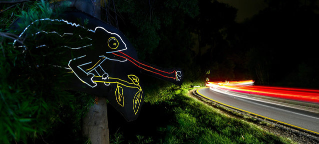 A long exposure image shows vehicles travelling past an installation that is part of The Endemic Project created by South African artist and filmaker Bryan Little in Cape Town, South Africa, late 18 August 2015. (Photo by Nic Bothma/EPA)