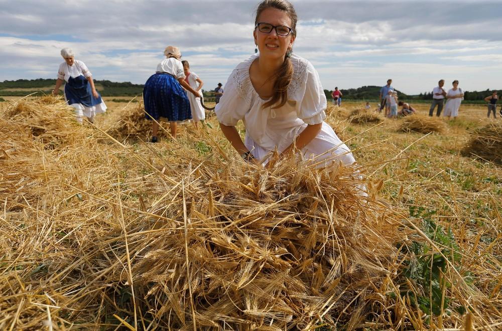 Harvest Festival in Hungary