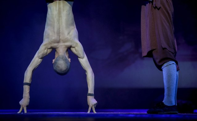 """A Shaolin monk performs a handstand using two fingers from each hand during a media preview of """"Shaolin"""" at the Marina Bay Sands in Singapore, 13 July 2016. The Shaolin monks with perform from 13 to 31 July 2016, and the show features a combination of death-defying acts, fight choreography and acrobatics by ordained Shaolin monks from China. (Photo by Wallace Woon/EPA)"""