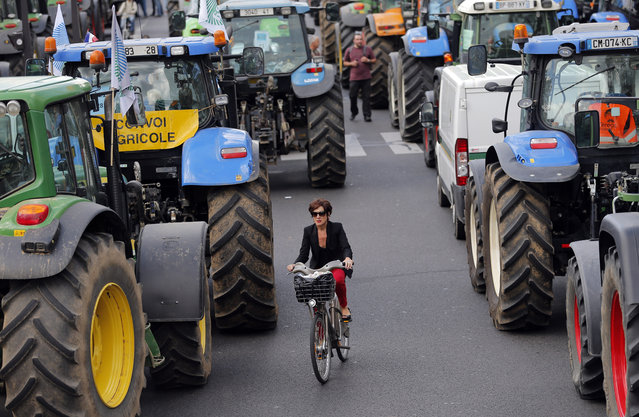 A woman rides her bike between tractors as angry farmers demonstrate in Paris, Thursday, September 3, 2015. (Photo by Christophe Ena/AP Photo)