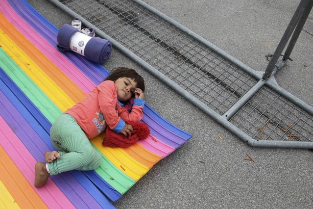A young migrant rests while waiting for a train at the railway station in Nickelsdorf, Austria September 5, 2015. (Photo by Srdjan Zivulovic/Reuters)