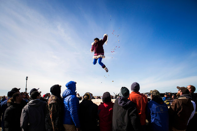 The traditional blanket toss at the annual whaling feast in Point Hope. For the Iñupiat villagers nothing is more important than the bowhead whale. The calendar year revolves around hunting, fishing and gathering. (Photo by Katie Orlinsky/Getty Images)
