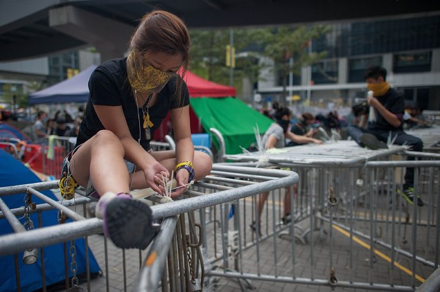 Pro-democracy protesters reinforce barricades with cable ties on a street outside of Citic Tower on November 18, 2014 in Hong Kong. Baliffs oversaw the removal of some barricades blocking access to Citic Tower after an injunction was requested by the owners. Hong Kong's high court has authorized police to arrest protesters who obstruct bailiffs on the three interim restraining orders.The court order comes as democracy protests enter their eighth week. (Photo by Anthony Kwan/Getty Images)