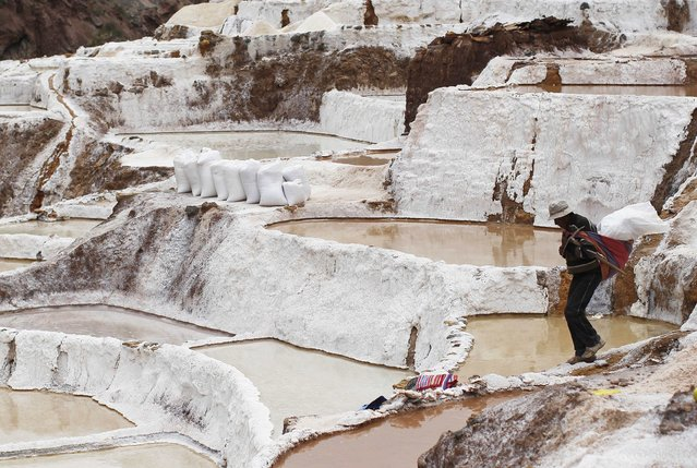 A worker carries a bag of salt after collecting it from a pond at the Maras mines in Cuzco December 3, 2014. Salt has been obtained in Maras since pre-Incan times by evaporating highly salty local subterranean stream water. The water is intricately channelled through constructions, flowing gradually down onto several hundred ancient terraced ponds. (Photo by Enrique Castro-Mendivil/Reuters)
