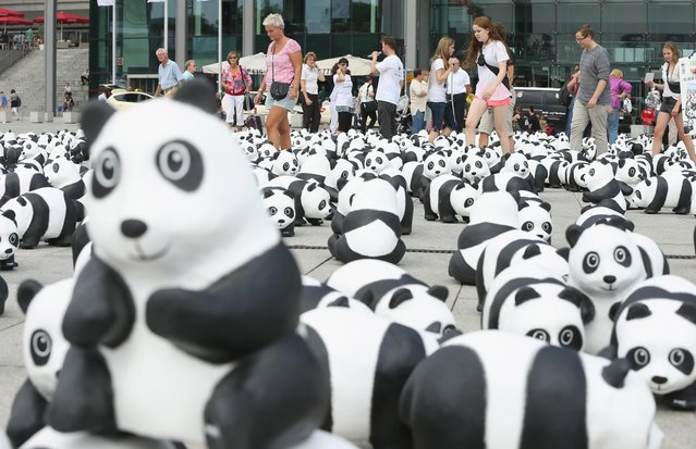 Visitors walk among 1,600 styrofoam panda bear sculptures displayed in front of Hauptbahnhof main railway station by the World Wildlife Fund on August 5, 2013 in Berlin, Germany. The WWF is celebrating its 50th anniversary and is drawing attention to the fact that only 1,600 panda bears remain in the wild. The display will soon travel to 25 other cities in Germny. (Photo by Sean Gallup/Getty Images)
