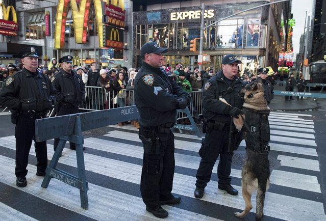 A New York Police Department K-9 jumps on his handler while other officers stand guard in Times Square ahead of New Year's Eve celebrations in Manhattan, New York, December 31, 2015. (Photo by Darren Ornitz/Reuters)