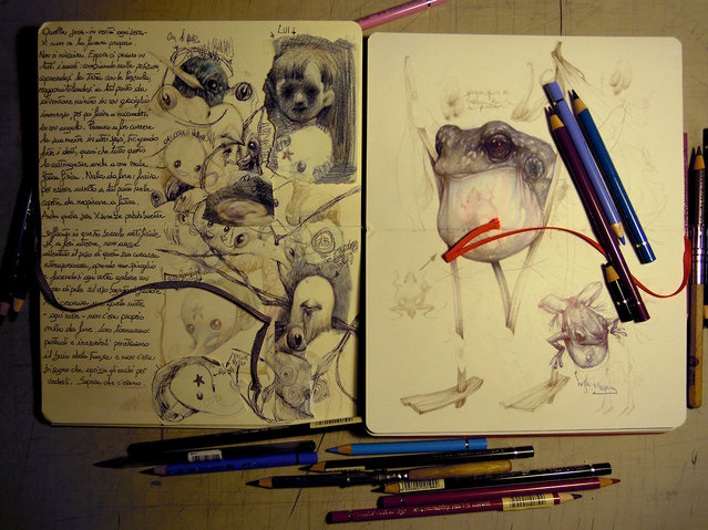 Pencil Artist Marco Mazzoni
