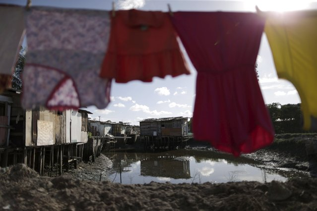"Laundry hangs on a clothesline in front of houses at a lake dwelling also known as or palafitte or ""Palafito"" in Recife, Brazil, March 1, 2016. (Photo by Ueslei Marcelino/Reuters)"