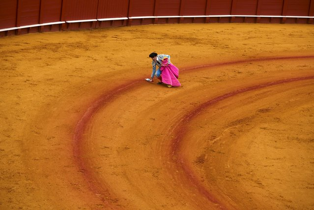 A rejoneador (mounted bullfighter) assistant takes a banderilla from the arena during a bullfight at The Maestranza bullring in the Andalusian capital of Seville, southern Spain April 26, 2015. (Photo by Marcelo del Pozo/Reuters)