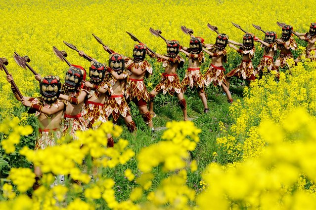 Schoolchildren perform a Nuo Dance in a rapeseed field, Wuyuan county, Jiangxi province, China. (Photo by Rex Features)