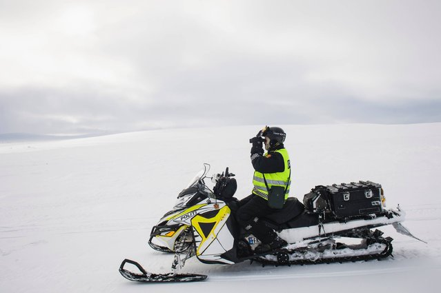 """This file photo taken on March 15, 2017 shows Norwegian reindeer police officer Jim Hugo Hansen looking through his binoculars as he patrols the Finnmark county, located in the northeastern part of Norway. It's the """"reindeer police"""" in Norwegian Lapland, the only force of its kind in the world. Their job is to prevent conflicts between herders and ensure the Far North doesn't turn into the Wild West. (Photo by Jonathan Nackstrand/AFP Photo)"""