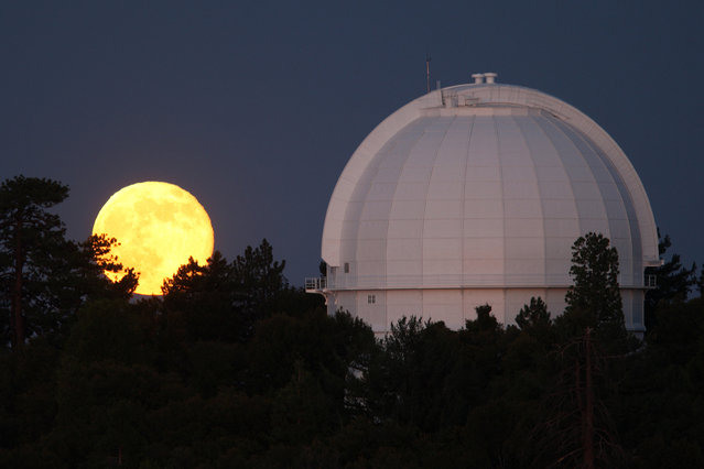 The supermoon rises behind the historic Mount Wilson Observatory on July 12, 2014 at Mount Wilson in the Angeles National Forest, northeast of Los Angeles. (Photo by David McNew/Getty Images)