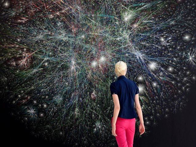 "A woman looks at the visualization of data traffic online, entitled ""The Opte Project"" by US copmuter scientist and artist Barrett Lyon, on display at the Kunsthalle in Kiel, Germany, 25 July 2014. The exhibition ""Nets. Weaving Webs in Art"" with 55 works from 25 contemporary artists will run from 28 July until 16 November. (Photo by Carsten Rehder/EPA)"