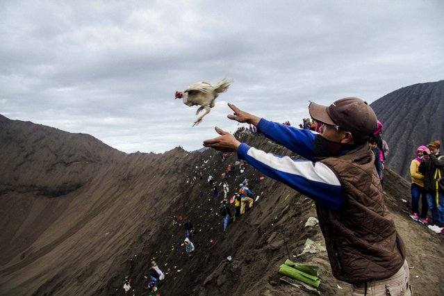 An Indonesian Tenggerese Hindu worshipper throws a chicken as a offering towards the crater of Mount Bromo during the Yadnya Kasada Festival in Probolinggo, East Java, Indonesia, 21 July 2016. (Photo by Fully Handoko/EPA)