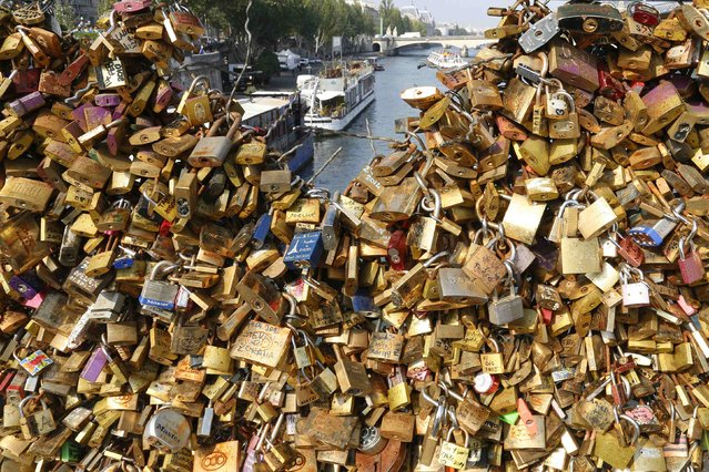 """Padlocks clipped by lovers are seen on the fence of the Pont des Arts over the River Seine in Paris September 23, 2014. A city hall campaign to save the bridges of Paris from the weight of hundreds of thousands of brass """"love locks"""" has not checked the ardour of droves of tourists, who continue to view the City of Light as the City of Love. Iron grills lining the bridges have since 2008 been increasingly  covered by brass locks purporting to symbolize the unending love of visiting tourists. (Photo by Jacky Naegelen/Reuters)"""