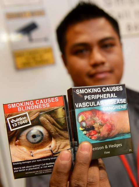 Bookshop supervisor Sanjit Amatya holds packaged cigarettes have to be sold in identical olive-brown packets bearing the same typeface and largely covered with graphic health warnings, with the same style of writing so the only identifier of a brand will be the name on the packet, in Sydney on December 1, 2012.  A new world-first law forcing tobacco companies to sell cigarettes in identical packets came into effect Saturday in Australia in an effort to strip any glamour from smoking and prevent young people from taking up the habit.  AFP PHOTO/William WEST        (Photo credit should read WILLIAM WEST/AFP/Getty Images)