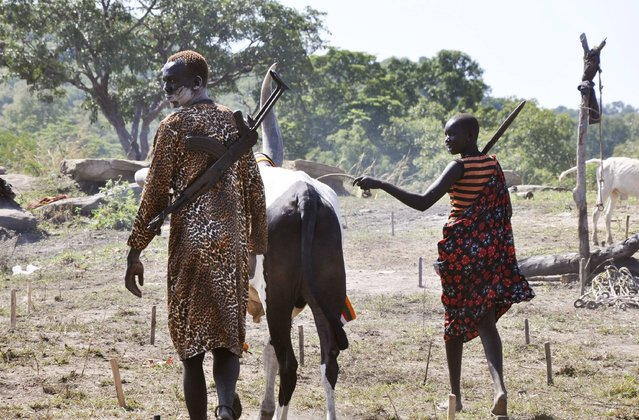 Cattle keepers lead their cow home after grazing at a cattle camp outside the capital of Juba, October 18, 2014. (Photo by Jok Solomon/Reuters)