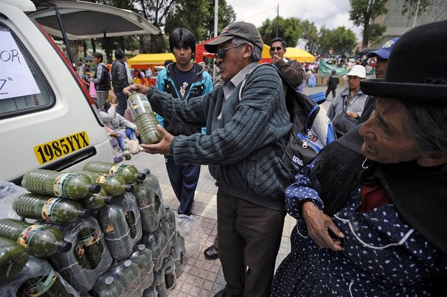 """A man looks at a bottle of an energy drink made with coca leaves during a celebration for the reincorporation of Bolivia to the UN Convention Against Illicit Traffic in Narcotic Drugs in La Paz on January 14, 2013. """"The coca leaf is not any more seen as cocaine (..), it is a victory of our identity"""" said Bolivian President Evo Morales. AFP PHOTO/Jorge Bernal        (Photo credit should read JORGE BERNAL/AFP/Getty Images)"""
