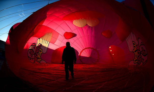 """Pilot Doug Gantt walks through his balloon before a morning launch in Statesville, N.C., on , on October 17, 2014. The Ham-Let balloon, billed as the """"World's Largest Flying Pig"""" was among a dozen balloons that launched over Iredell County to kickoff the annual Carolina BalloonFest. (Photo by Todd Sumlin/The Charlotte Observer)"""