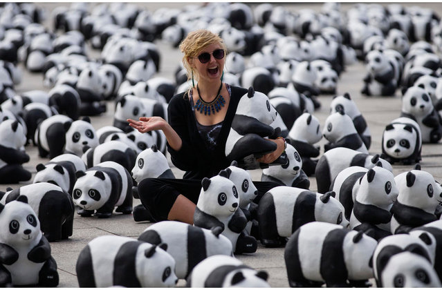 A woman poses as she has her picture taken amid 1600 panda bear sculptures in Berlin August 5, 2013. Marking the 50th anniversary of its existence, on Monday the German branch of the World Wide Fund for Nature  (WWF) environmental conservation organisation placed 1600 panda bear sculptures on front of Berlin's main train station to draw attention to the plight of the endangered species that serves as the NGO's mascot. There are currently 1600 panda bears alive in the wild, the organisation said in a press release. (Photo by Thomas Peter/Reuters)