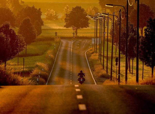 A man drives his bike on a road in the outskirts of Frankfurt, Germany, as the sun rises Monday, June 14, 2021. (Photo by Michael Probst/AP Photo)