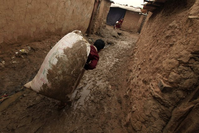A boy carries a sack of wheat husk while going back to his home in a slum on the outskirts of Islamabad February 20, 2015. (Photo by Faisal Mahmood/Reuters)
