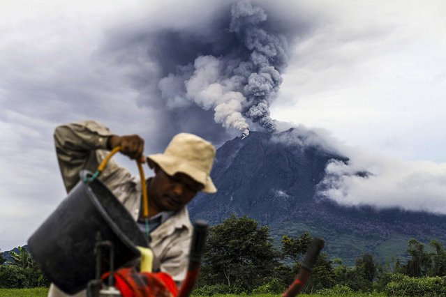 A villager pours pesticide from a bucket as Mount Sinabung spews ash at Kebayaken village in Karo district, Indonesia's North Sumatra province, on December 4, 2013. The country has ordered the evacuation of 15,000 residents near the active volcano. (Photo by Roni Bintang/Reuters)