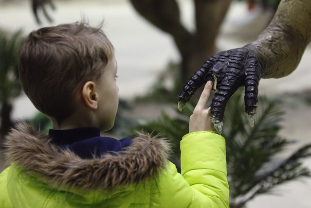 A child touches the claw of a life-sized Ceratosaurus dinosaur model in Vienna, February 7, 2014. (Photo by Heinz-Peter Bader/Reuters)