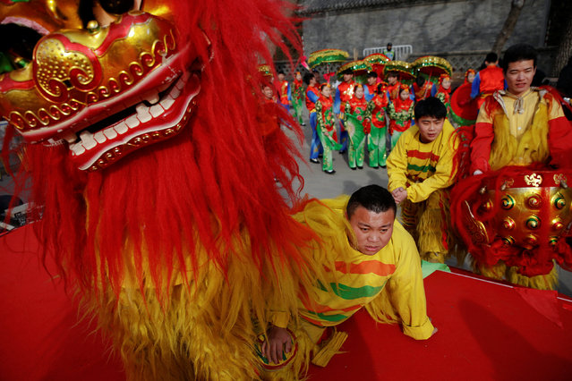 Performers in lion dance costumes watch others appearing on the stage at the Longtan park as the Chinese Lunar New Year, which welcomes the Year of the Rooster, is celebrated in Beijing, China January 29, 2017. (Photo by Damir Sagolj/Reuters)