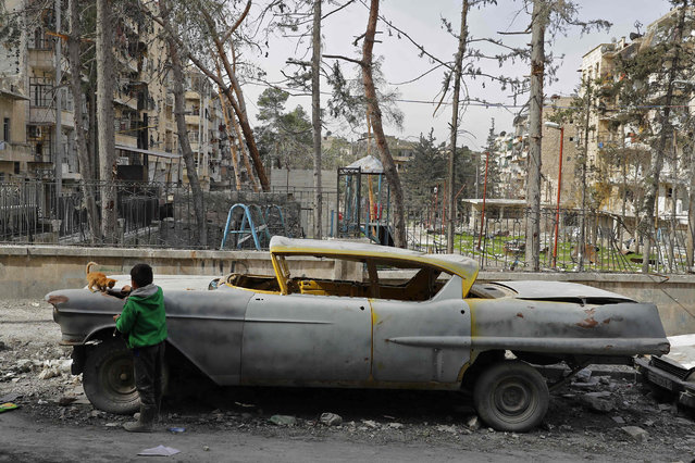 A picture taken on March 9, 2017, shows a boy playing with a cat next to a 1948 Buick parked outside the home of Mohammad Mohiedine Anis in the formerly rebel-held al-Shaar neighbourhood. (Photo by Joseph Eid/AFP Photo)