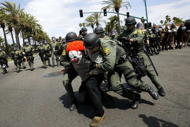 Orange County Sheriff's deputies take a protester into custody outside the Anaheim Convention Center where Republican presidential candidate Donald Trump held a rally, Wednesday, May 25, 2016, in Anaheim, Calif. (Photo by Jae C. Hong/AP Photo)