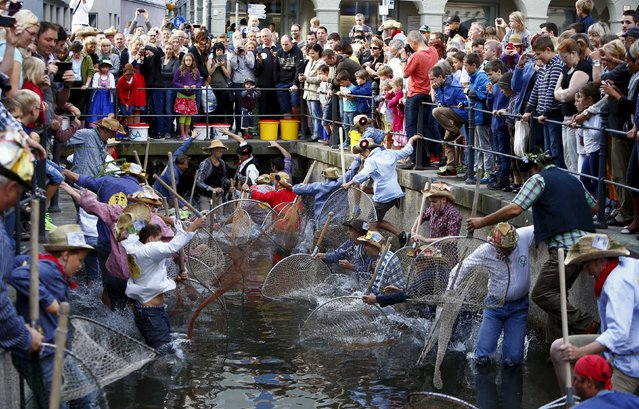 """Fishermen jump into a small river to catch trout as they celebrate Fischertag (Fisherman's Day) in downtown Memmingen, southern Germany, July 25, 2015. The annual Fisherman's Day (Fischertag) tradition goes back to the year of 1465 where every fisherman who were born in Memmingen tries to catch trout from the river. The participant who catches the biggest trout will be named the """"Fisher King"""" for one year. (Photo by Michaela Rehle/Reuters)"""