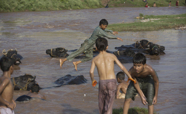 Pakistani children play in a stream flooded due to heavy rains in Rawalpindi, Pakistan, Wednesday, July 22, 2015. (Photo by Mohammad Sajjad/AP Photo)
