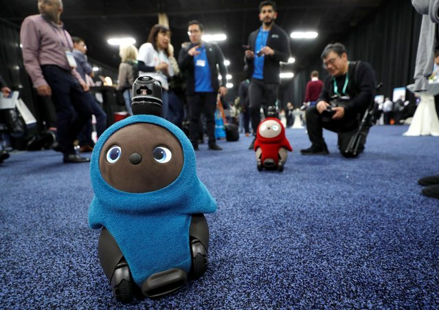 Lovot companion robots by Groove X wander in front their booth at CES Unveiled during the 2020 CES in Las Vegas, Nevada, January 5, 2020. (Photo by Steve Marcus/Reuters)