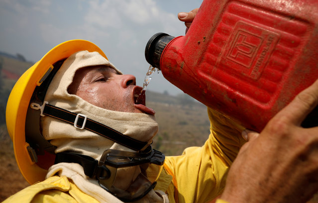 A Brazilian Institute for the Environment and Renewable Natural Resources (IBAMA) fire brigade member drinks water as he attempts to control hot points during a fire in Apui, Amazonas state, Brazil on August 31, 2019. (Photo by Bruno Kelly/Reuters)