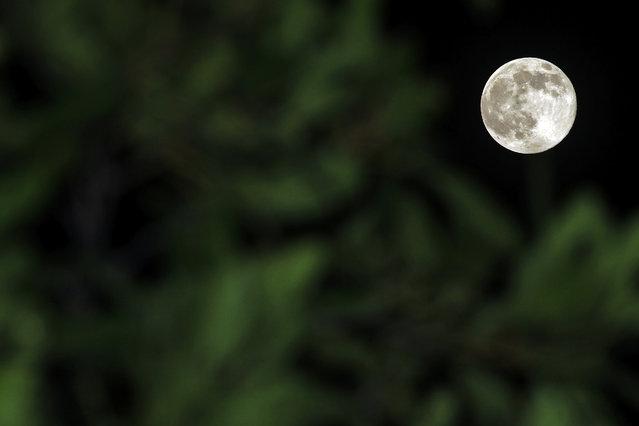A perigee moon rises behind in Klang, outside Kuala Lumpur, Malaysia, Saturday, July 12, 2014. (Photo by Lai Seng Sin/Associated Press)