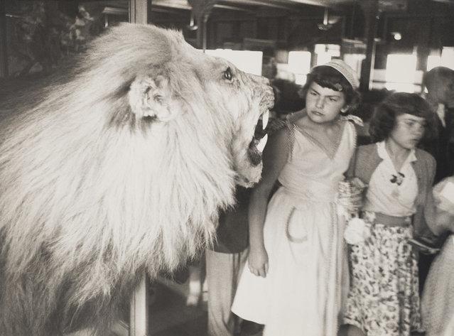 New York City, 1953. (Photo by Elliott Erwitt/Harry Ransom Center Collection/Magnum Photos)