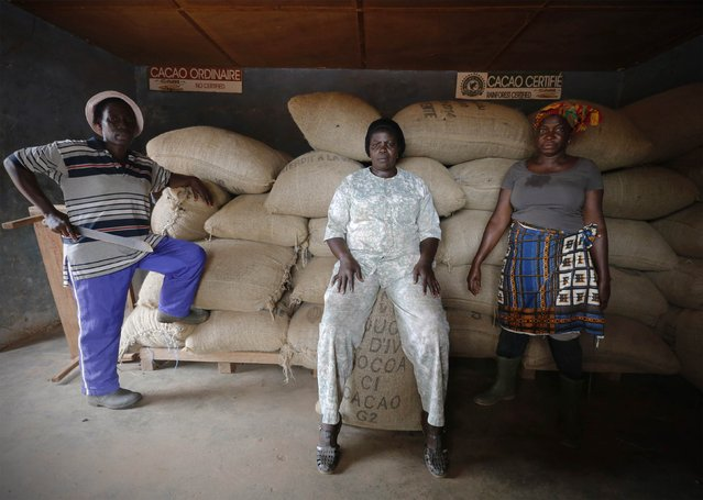 Women from a local cocoa farmers association called BLAYEYA pose for a photo in a cocoa warehouse in Djangobo, Niable in eastern Ivory Coast, November 17, 2014. (Photo by Thierry Gouegnon/Reuters)